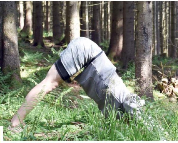 Yoga am Waldrand