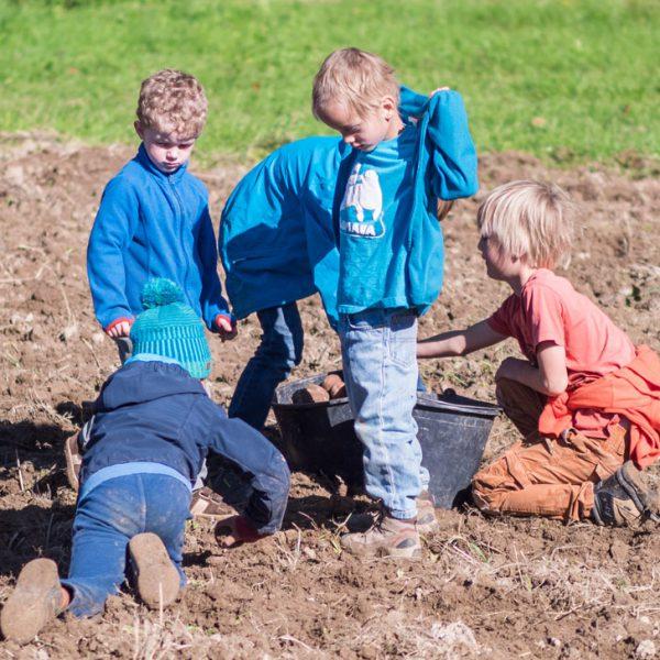 Mit Montessori Kindern auf den Acker