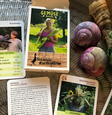 Das Gemüsequartett – unser erster Artikel kommt in den Handel!